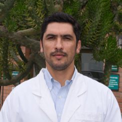 Daniel Fernando Díaz Ávila